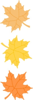 5215D 3 Maple Leaves Die