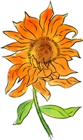 1202 Sunrise Sunflower
