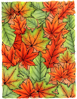 Fall Leaf Background 1243