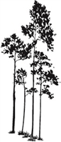 1320-04 Silhouette Trees #2
