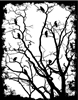 1358 Framed Crows in trees