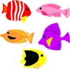 5321-01D Tropical Fish Die