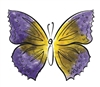 Watercolor Butterfly #8 948